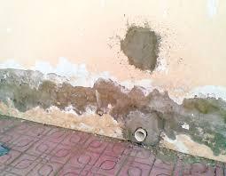 تقنية منع الرطوبة ورشح الجدران وعلاجها في تقنيات البناء